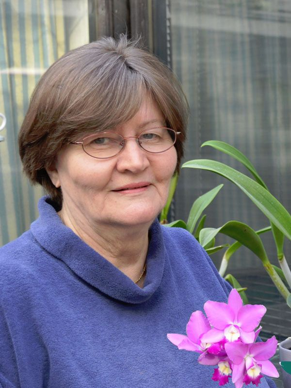 Mariliina Perkko