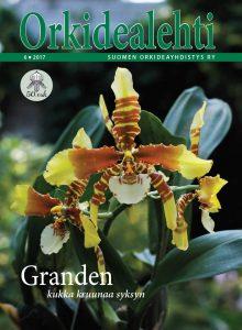 Orkidealehdet - MYYNNISSÄ